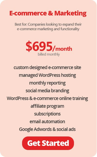E-commerce Website with Online Marketing