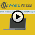 WordPress Basics Online Video