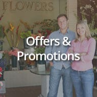 How to Use Offers and Promotions