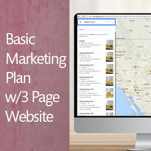 Basic Marketing w/3 Page WordPress Website