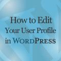How to Edit Your User Profile in WordPress Online Video Training