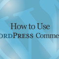 How to Use Wordpress Comments Video Tutorial
