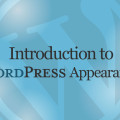 Introduction to WordPress Appearance Tutorial Video