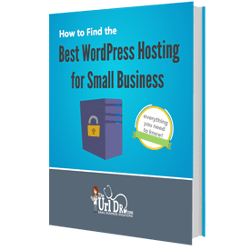 Best WordPress Hosting for Small Business eBook