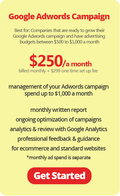 Google Adwords Campaign for Small Business $250 a month