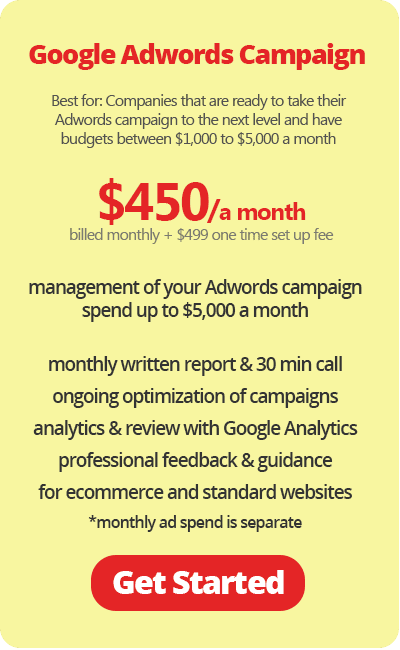 Google Adwords Campaign $450 a Month