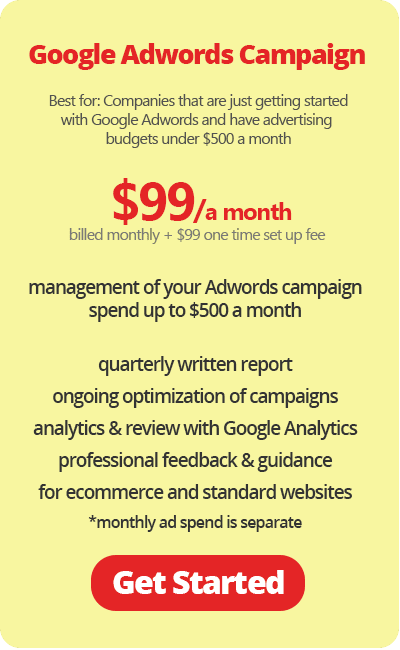 Google Adwords Campaign for Small Business $99 a month