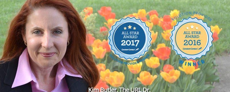 Kim Butler Constant Contact All Star Award Winner 2017